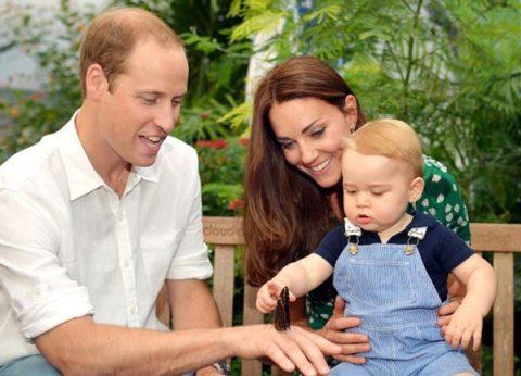 Cambridge royal family portrait July 2014