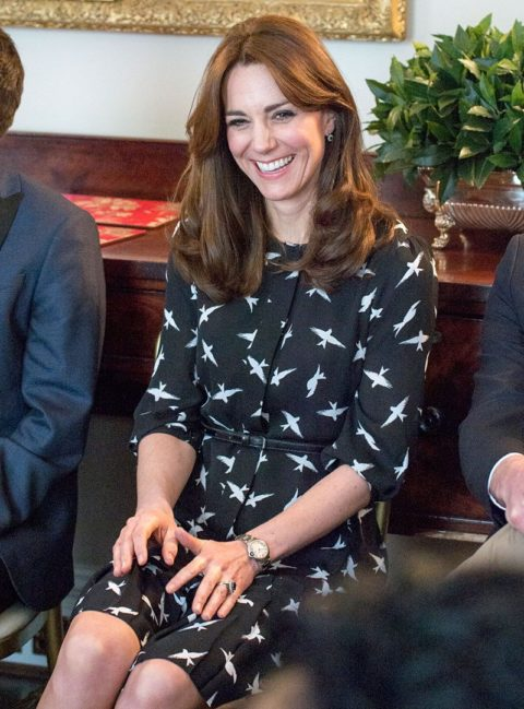kate middleton findmike campaign
