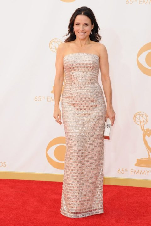 Emmys 2013 Julia Louise Dreyfuss
