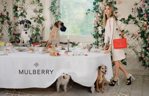 Mulberry Spring 2014 Ad