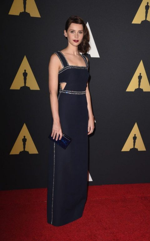 Celebrity Style Felicity Jones Motion Picture Academy Governors Awards