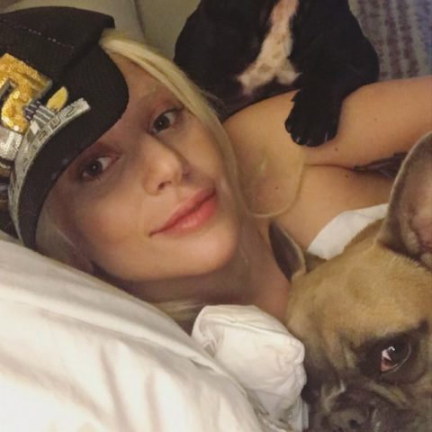 celebrities-dogs-pets-national-dog-day-01