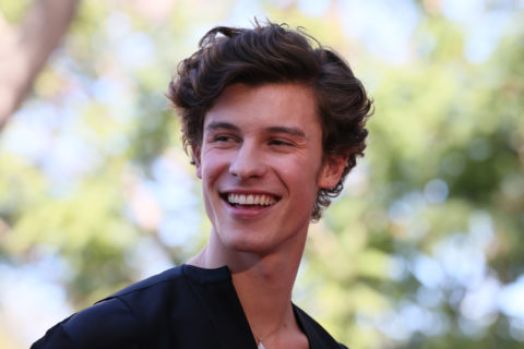 shawn mendes documentary