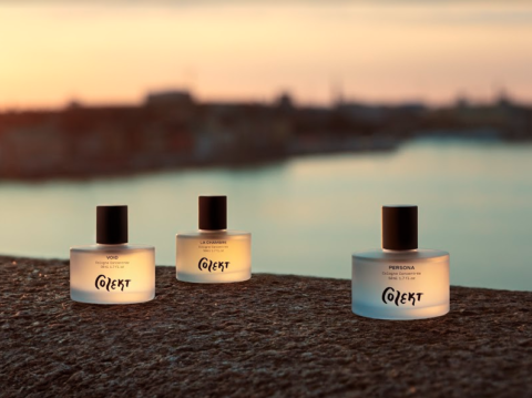 Colekt fragrances