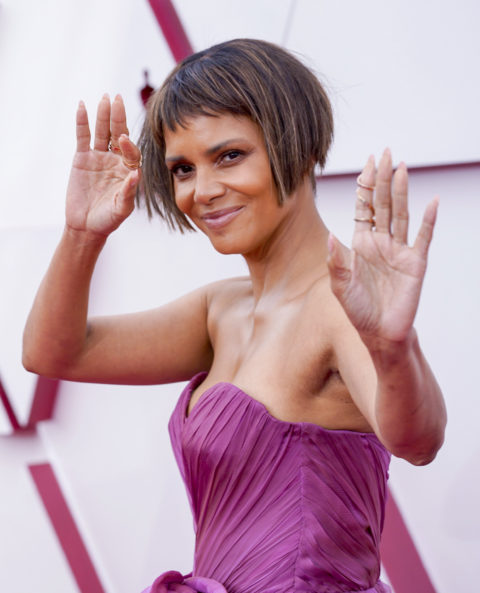 93rd Annual Academy Awards - Halle Berry