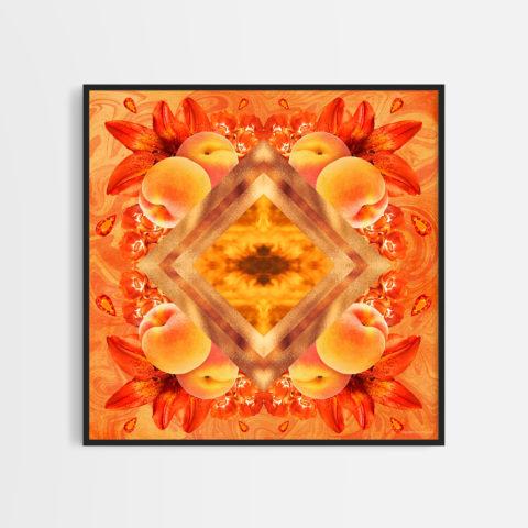 Darryl Mabey Rainbow Connection 2021 Orange