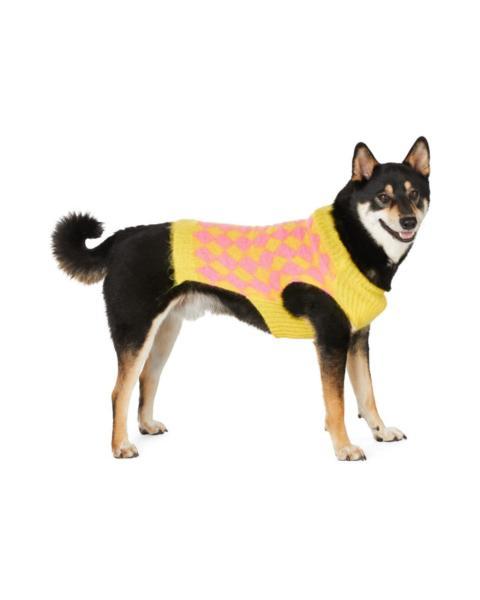 dog sweater international dog day