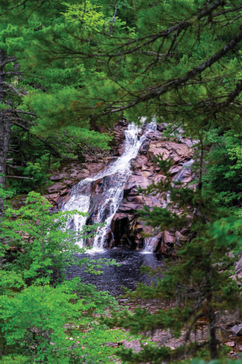 What to Do, See and Eat on Nova Scotia's Cabot Trail