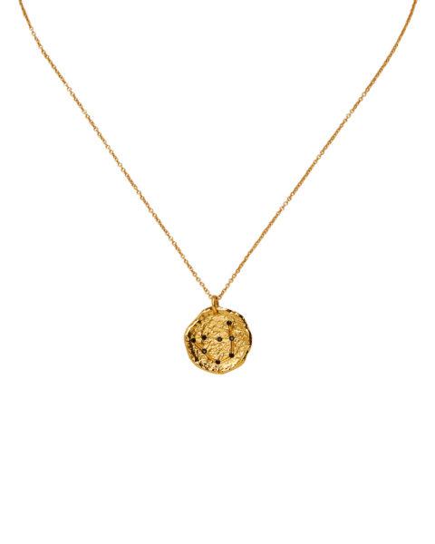 zodiac necklace capricorn