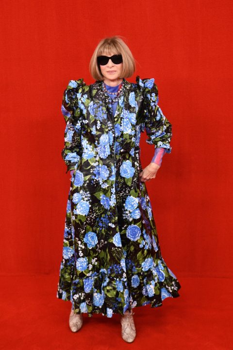 Balenciaga and The Simpsons Red Carpet:Anna Wintour